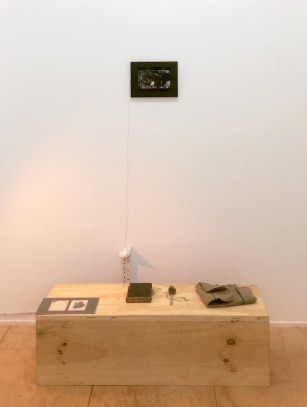 Kelise Franclemont and Marcin Czarnopys, 'Life and Death' (installation view), 2016, installation of found objects and digital film (12m40s). Image courtesy the artists.